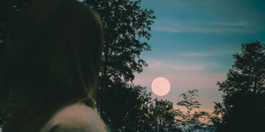 Vedic Astrology: What Does Your Moon Sign Mean?